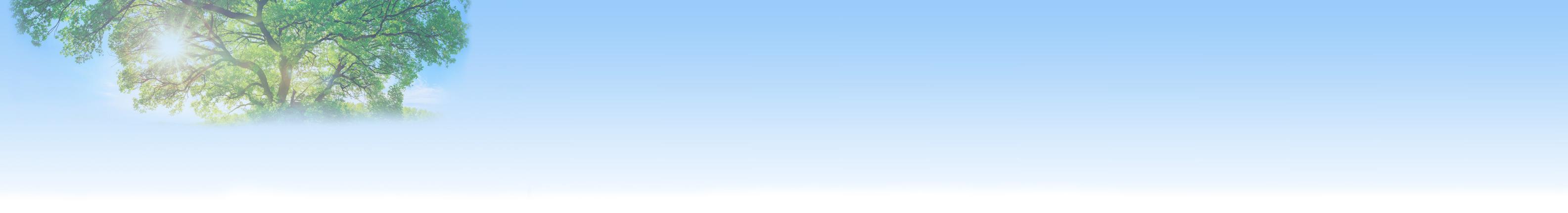 header-baum-blau1.jpg
